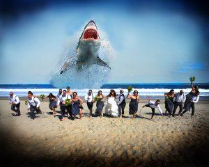 Lil.Will.Shark.2